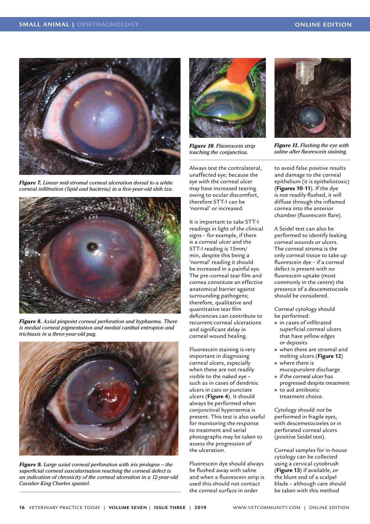 își pierde cunoștința; vederea s-a deteriorat teză în oftalmologie